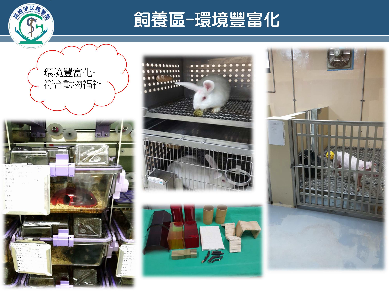 飼養區-環境豐富化(圖片)