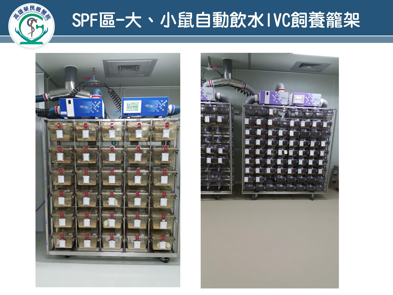 SPF區-大、小鼠自動飲水IVC飼養籠架(圖片)