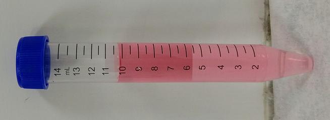 61無菌管-內含薄片細胞學專用固定液