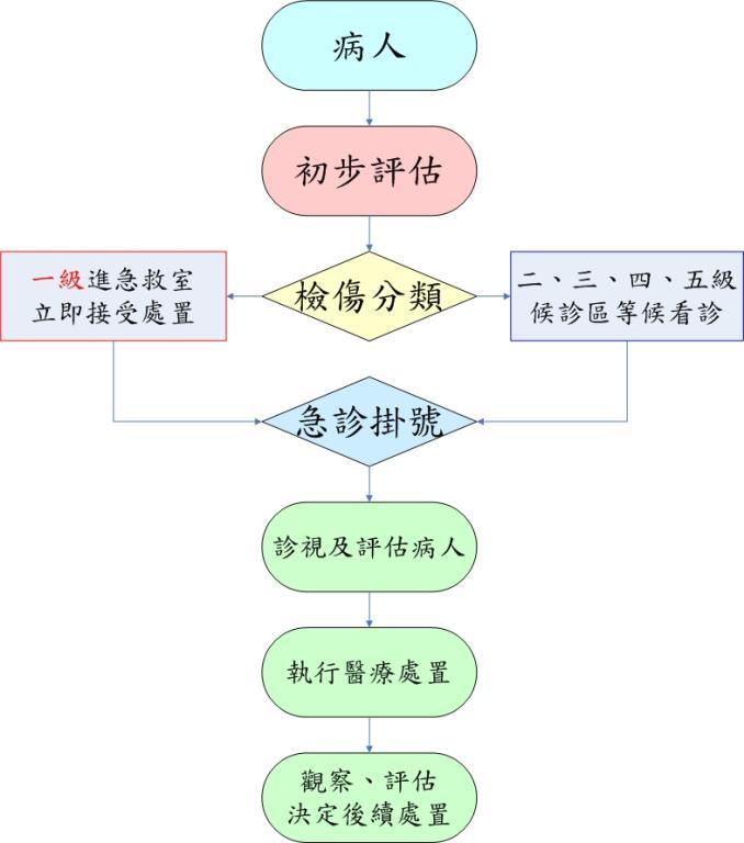 急診就診流程圖 (詳細說明如下)