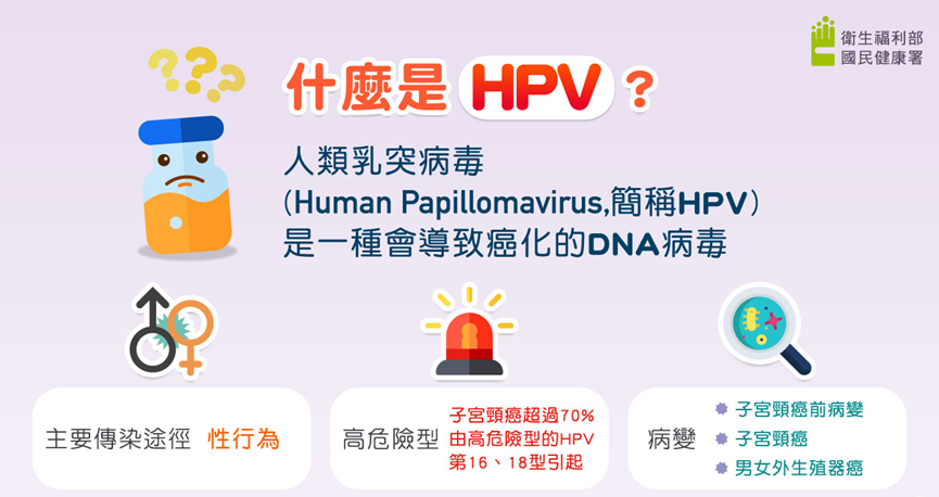 what is HPV?