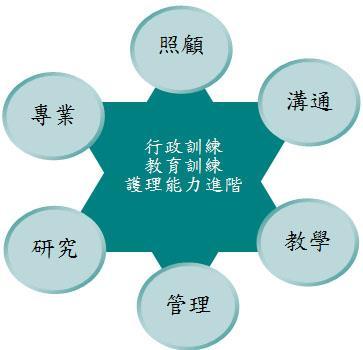 策略-照顧,溝通,教學,管理,研究,專業等