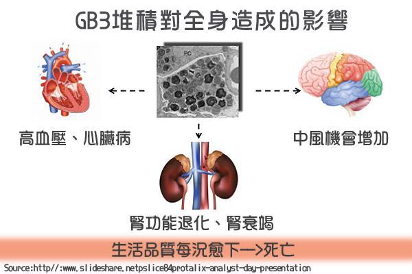 GB3堆積對全身造成的影響